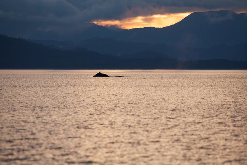 Alaska-153.jpg