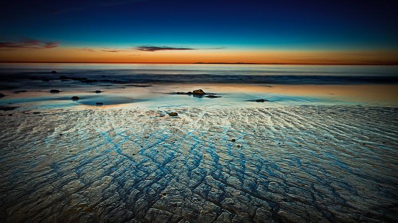 Coastal_Tribolet-102.jpg