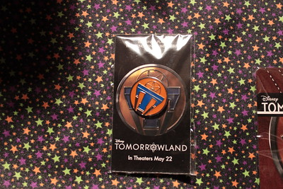 Tomorowland Pins