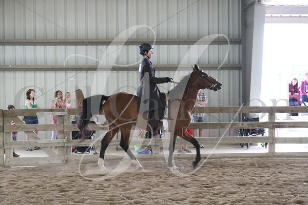 Saddleseat Equitation 6-9