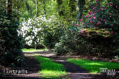Haughley Park Infinity Run 2021 Free Downloads