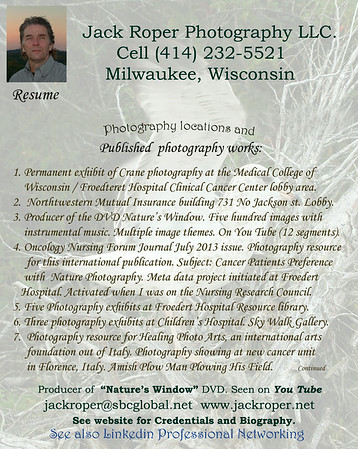 Jack's  biography and background