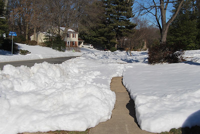 Blizzard of 2016