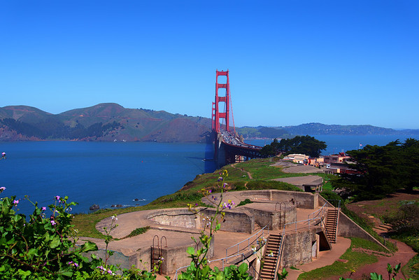 Golden Gate And Muir Woods