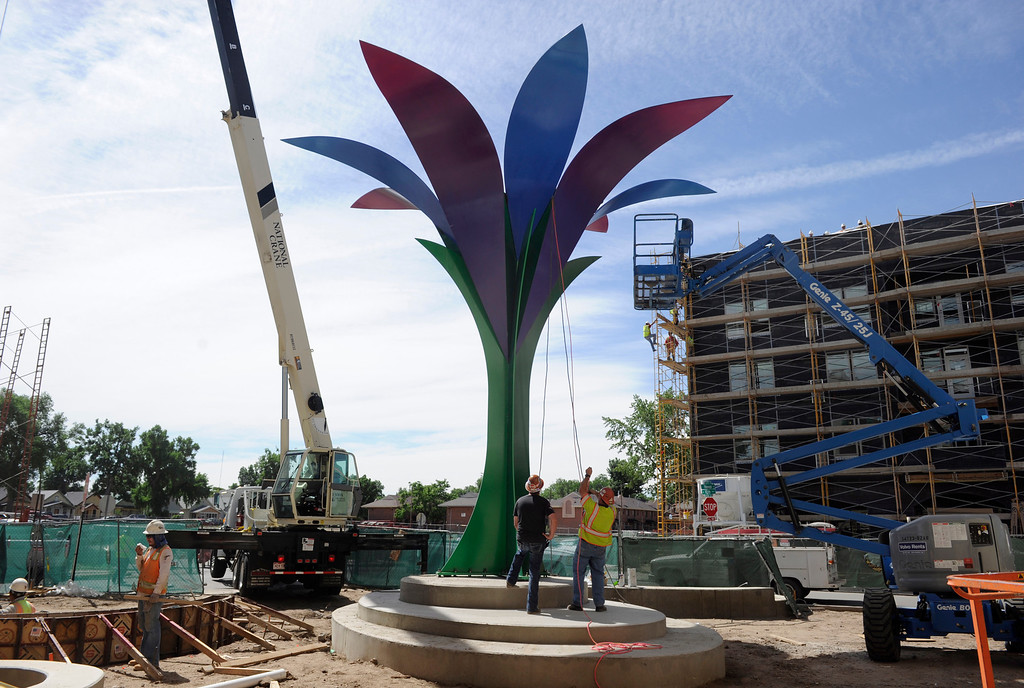 . Crews prepare a 30 foot-tall, 10-ton metal sculpture of a large flower titled Flor De La Alma by Denver artist Emanuel Martinez, to be topped off with a large white bulb that serves as the center of the flower, June 25, 2013. (Photo By Kathryn Scott Osler/The Denver Post)