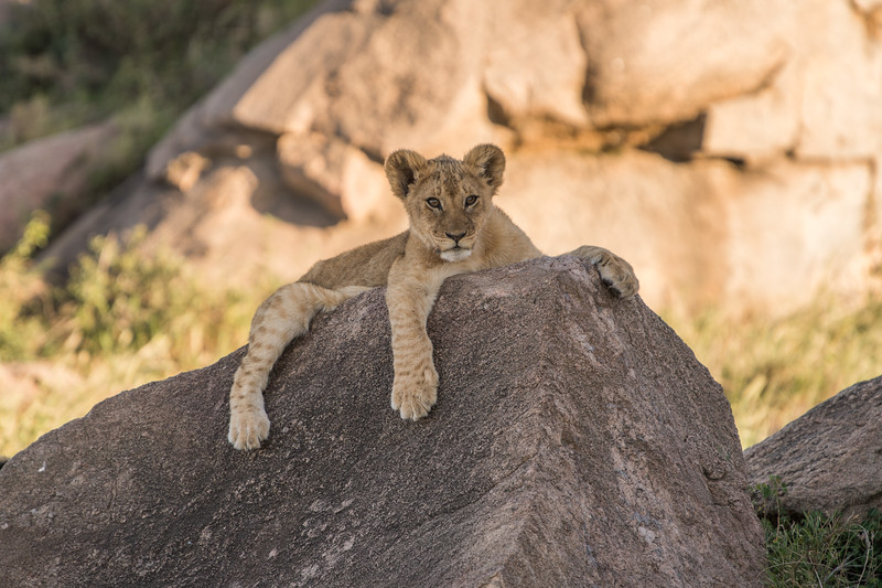 Tanzania_Feb_2018-610.jpg