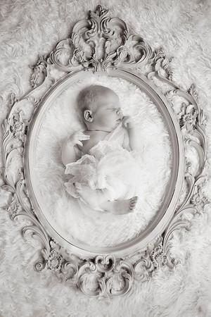 BabyRoseGerber