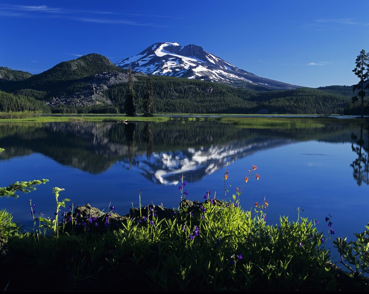 Sparks Lake w flowers sf.jpg