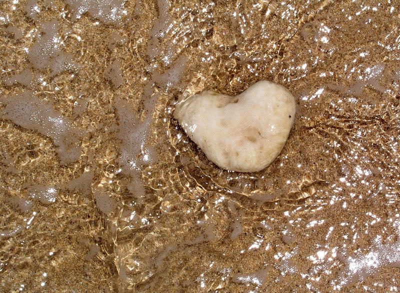 Heart-shaped ocean rock in shallow water on the beachNorth Shore, Oahu, Hawaii