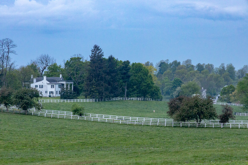 Manchester Horse Farm Lexington KY  April 25, 2019   013.jpg