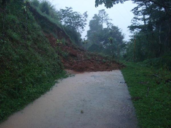 FloodsDominicalStreetSlideLindaGray.jpg