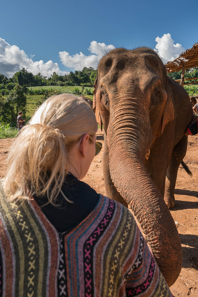 elephant-sanctuary-chiang-mai-5.jpg