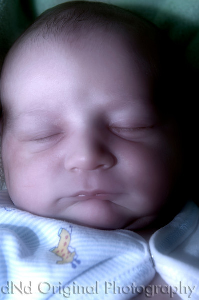 026 Declan 1 day Old (55mm dayfornight).jpg