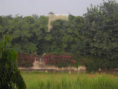 india & nepal 2011