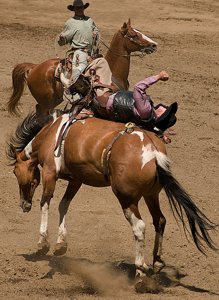 COOMBS RODEO-2009-3568A.jpg