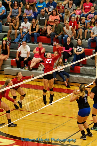 South Albany High School - Volleyball