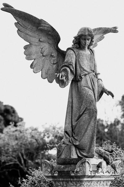 Angels 026.jpg