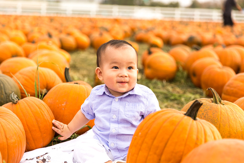 oliver_ella_pumpkin_patch-7.jpg