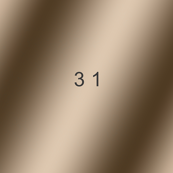 31.png