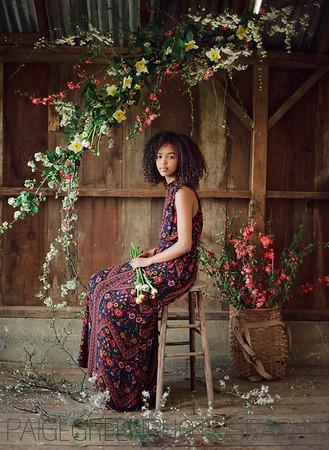 Ayan - Farm Flowers