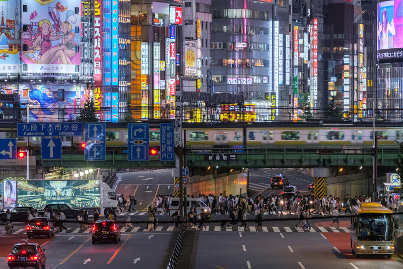 Lights of Kabukicho