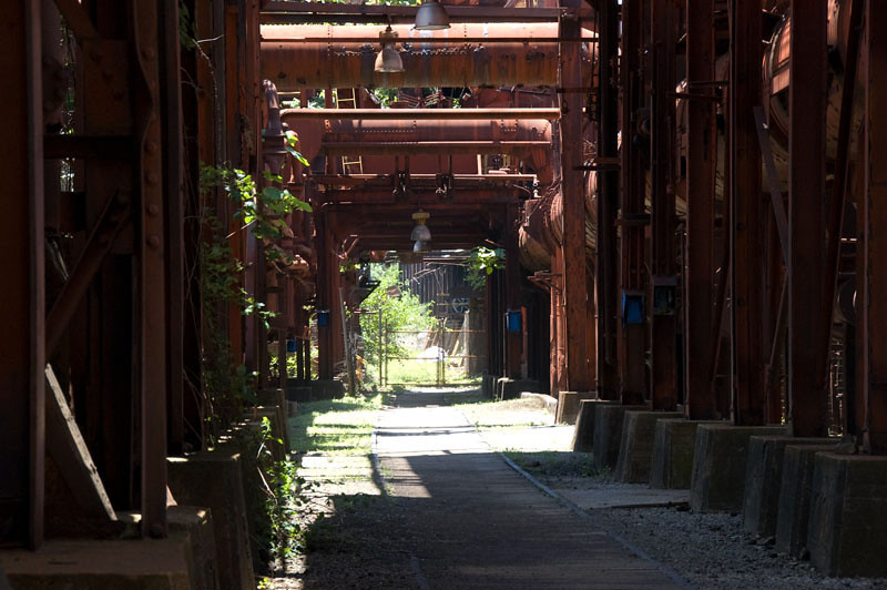 An odd garden like pressence cloaks the remains of this massive factory.