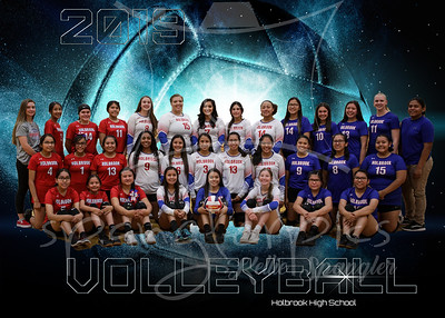 2019 HHS Volleyball