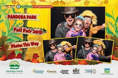 Pandora Park Fall Fair 2015