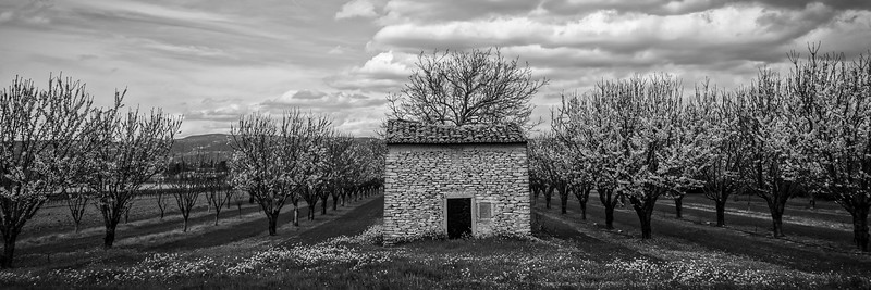 Orchard Shed, rural Southern France