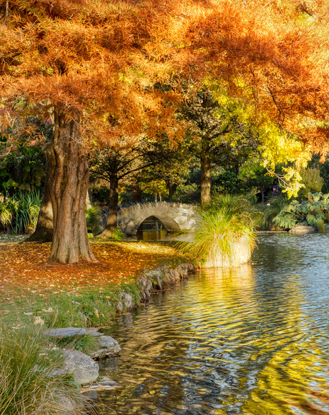 Autumn in Queenstown Gardens