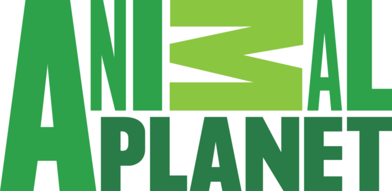 2000px-Animal_Planet_logo.svg.png