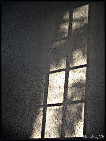 Evening Shadow  San Jose del Cabo, Mexico   www.youtube.com/watch?v=x-shmc5Bgc4