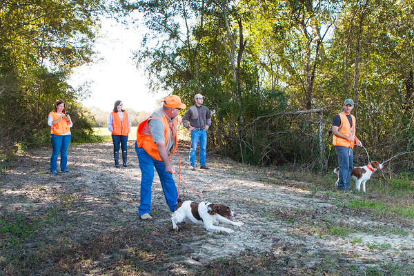 Sporting Dogs, Outdoors & Nature slide show