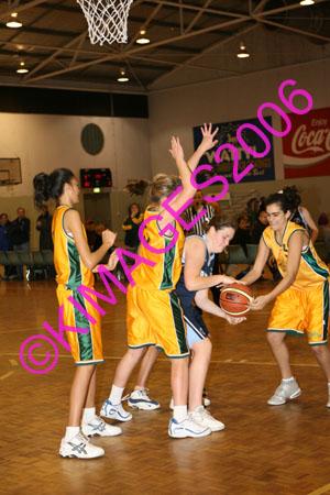 Week 14 Comets Vs Bankstown U14 W1 23-7-06
