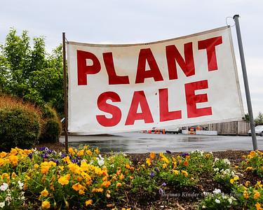 Garden Club Plant Sale 5/11/13