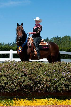 Key Classic Morgan Horse Show May 2012