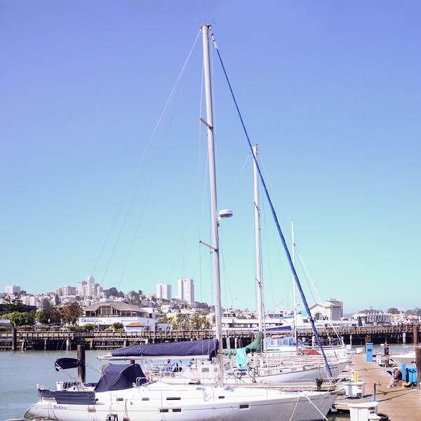 Sailboats docked at near Pier 39