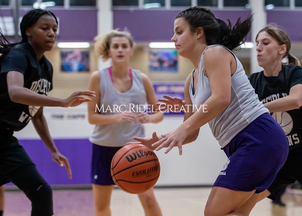 Broughton girls basketball vs Wake Forest. November 14, 2019. D4S_0139