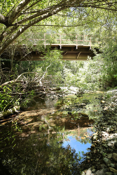 email acreage for sale - property-real estate cambria 319B1275.jpg