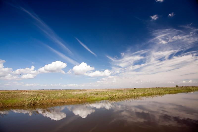 Guadiamar river in Doñana marshland area, town of Isla Mayor, province of Seville, autonomous community of Andalusia, southwestern Spain