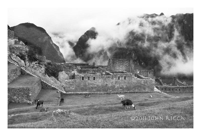 Machu Picchu 15.jpg