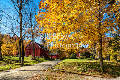 Fall - Vermont