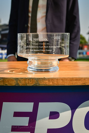 The totepool Racecourse Cash Back Available Irish EBF Maiden Fillies´ Stakes