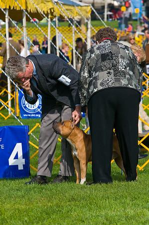 Terrier Show - Oct_10_09
