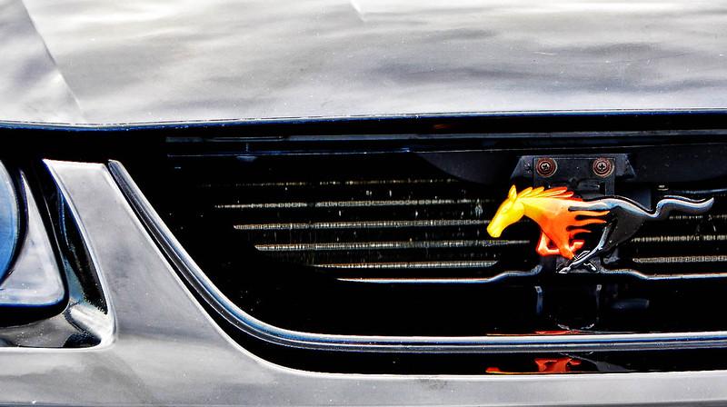 Mustangs 06-25-2011 27.JPG