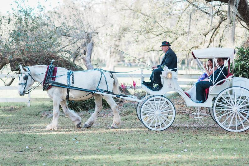 ELP0312 DeRoxtro Oak-K Farm Lakeland wedding-1384.jpg