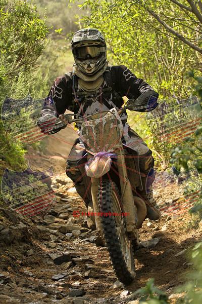 Rider 316