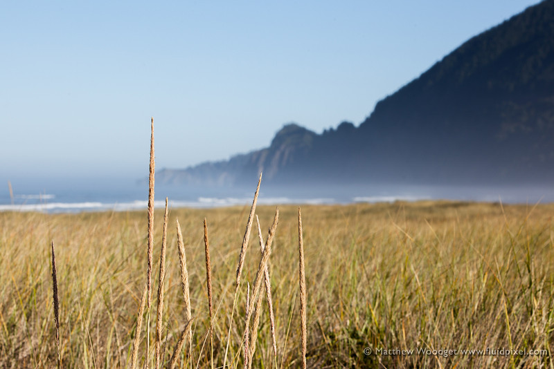Woodget-130821-040--cliff, grass - Plants, ocean - 15071001, seaside.jpg
