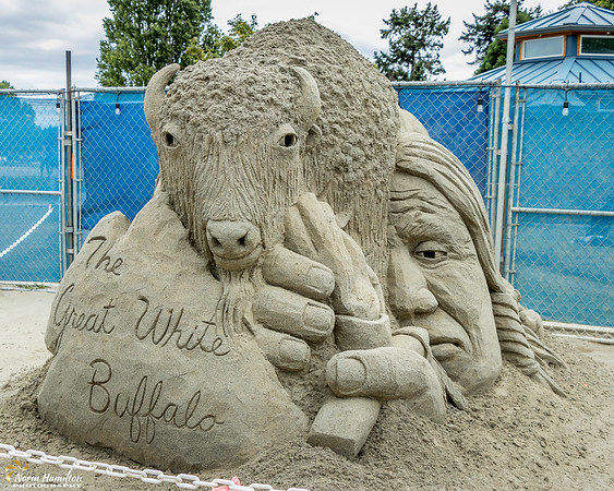 Parksville Sandsculpting Competition
