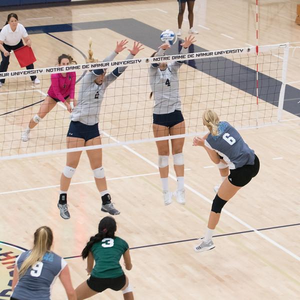 HPU Volleyball-92635.jpg